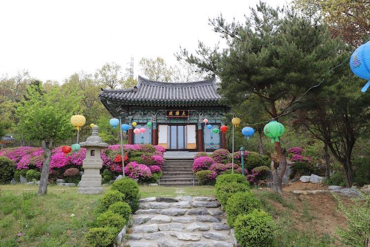 Lotus Lantern International Meditation Center