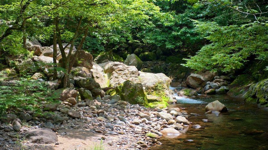 Jirisan National Park south korea