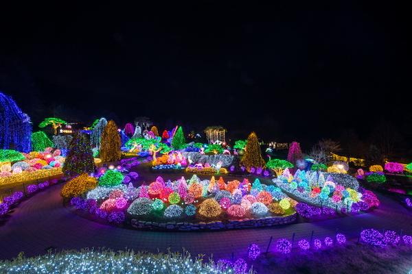 The Garden of Morning Calm Lighting Festival