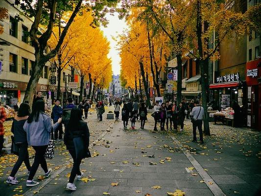 fall in seoul insadong