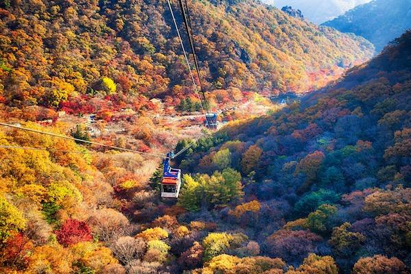Naejangsan National Park jeolla-do must-visit spots