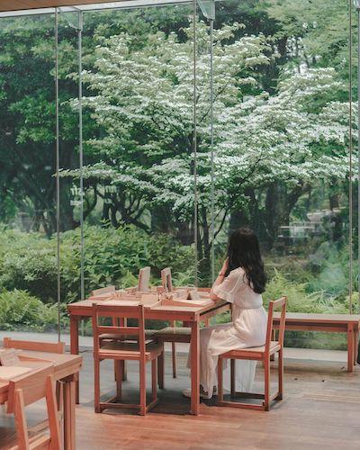 innisfree jeju house cafe