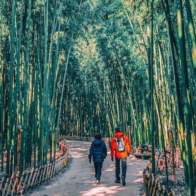 Taehwagang National Garden must-visit spots Gyeongsang