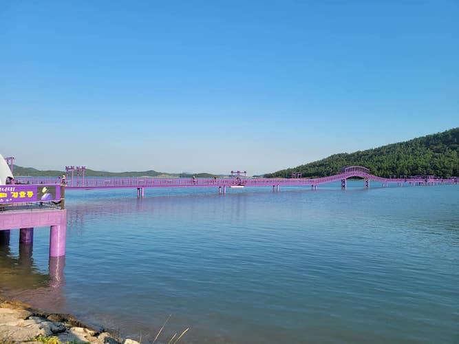 purple island Korea bridge